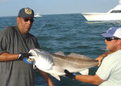 Inshore-Fishing-Virginia-Beach
