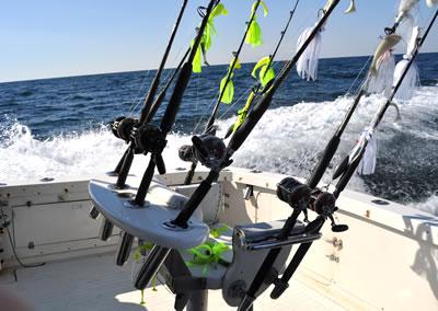 Virginia beach fishing report aquaman sportfishing charters for Va beach fishing report