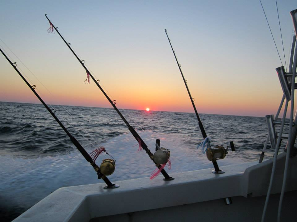 Virginia beach fishing report july 2 virginia beach for Virginia beach fishing charters