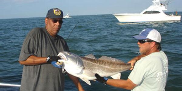 Virginia beach inshore fishing aquaman sportfishing for Fishing spots in virginia beach
